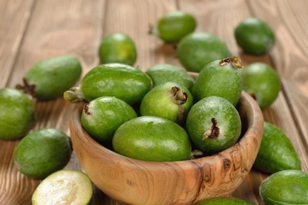 Der Nutzen und Schaden von Feijoa, nützliche Eigenschaften und Kontraindikationen, Rezepte