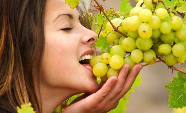 Kann ich Trauben essen?