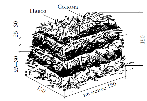 Das Schema der Hauptkomponenten für Pilzkompost