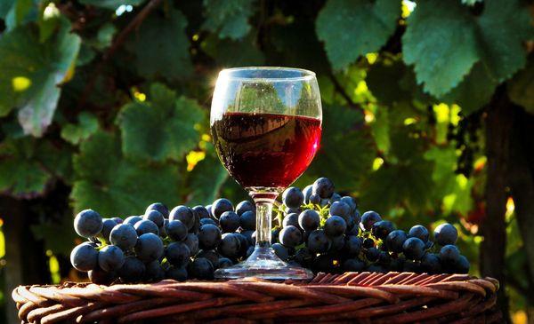 Wein aus fernöstlichen Trauben