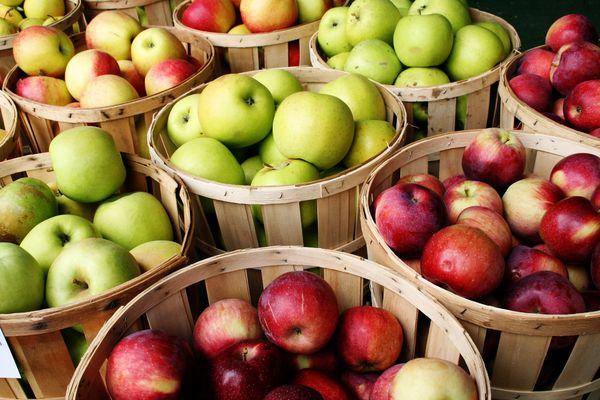 Die besten Apfelsorten