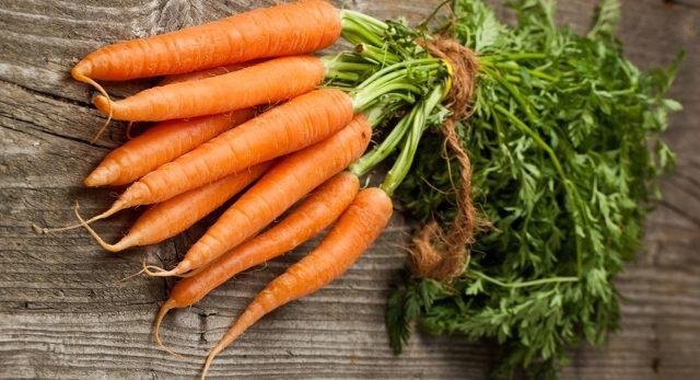 Karotten mit der Kizima-Methode pflanzen